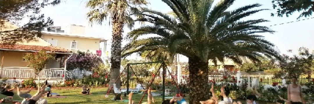 Joga ispod palmi